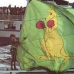 Aussie2 boxing kangaroo flag